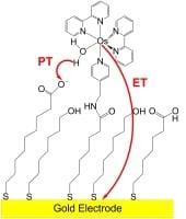 pcet_electrochem_3